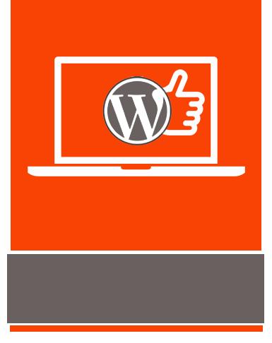 Alternate-web, agence web à metz, accompagnement de projet de création site internet sur Wordpress
