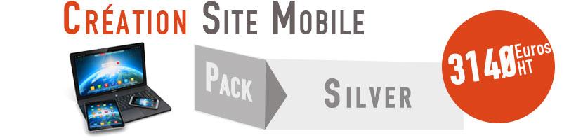 Alternate web - agence Metz - création de site internet mobile - offre prix silver