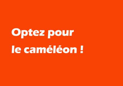 alternate-web Metz création de sites internet mobiles